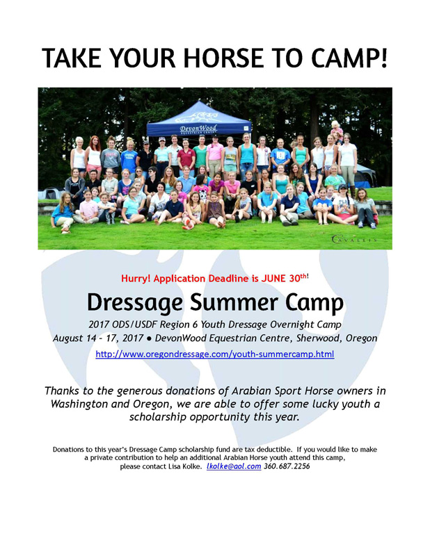 2017 Dressage Camp Scholarship