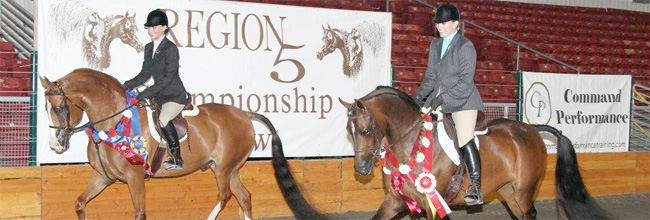 Region5 show champ and reserve trot