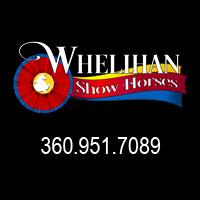 Whelihan Show Horses