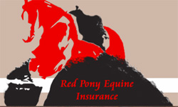 red pony insurance