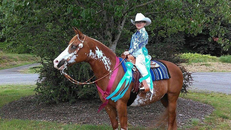 Region 5 Arabian Horse Association 2016 Who S Going To