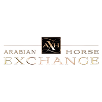 Arabian Horse Exchange