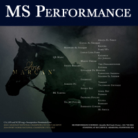 MS Performance
