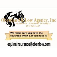 Obenland & Low Agency